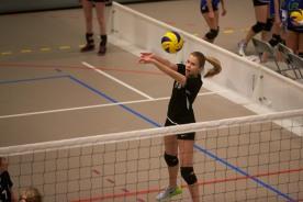VolleyVekst_NMU15_2011