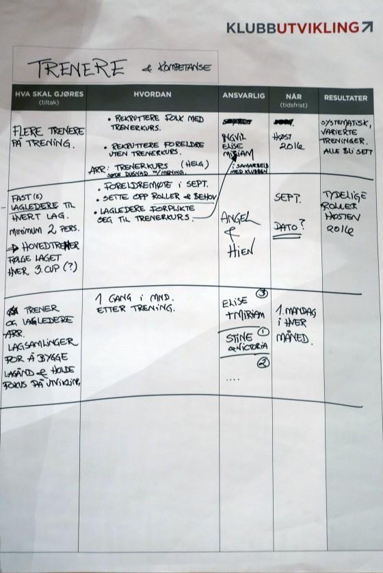 Eksempel på konkrete planer på prioriterte områder