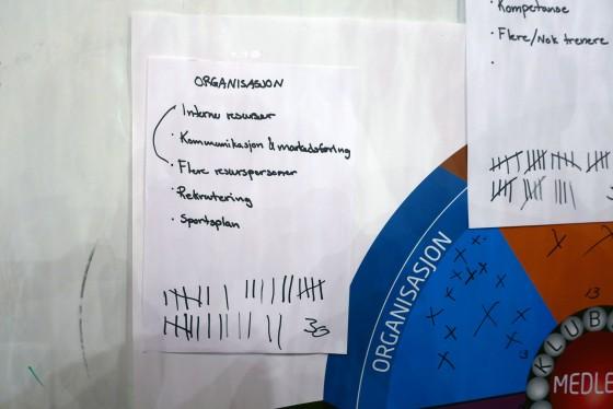 Gruppearbeid fant frem til områder å jobbe på. Det ble deretter avstemning for å prioritere blant disse.